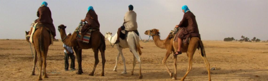 «Les mots nomades» : l'histoire d'un nom…