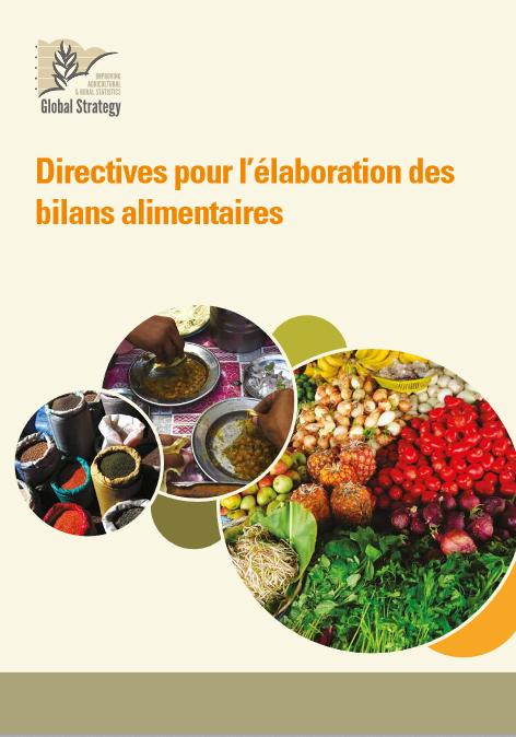 Directives pour l'élaboration des bilans alimentaires – FAO
